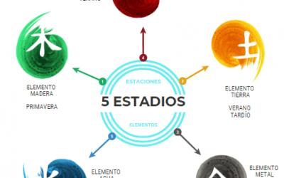 LA ALIMENTACIÓN SEGÚN LAS 5 TRANSFORMACIONES DE LA ENERGÍA