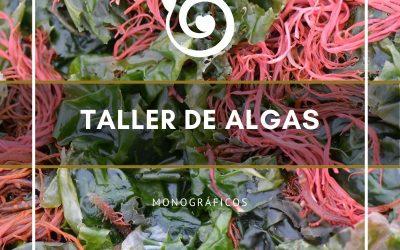 TALLER DE ALGAS