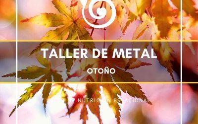 TALLER ELEMENTO METAL